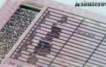 Как получить права на мопед в 16 лет