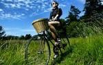 Как выглядит женский велосипед