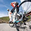 Велосипед какие мышцы развивает
